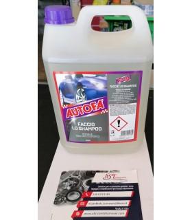 Shampoo Autofà per auto 2055professionale Arexons 5lt